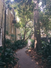 this little path charmed our socks off. Their were houses and mailboxes along it. Imagine this being your street!