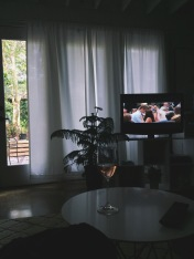 Wine and Nicholas Sparks movies often inhabited our chill time.
